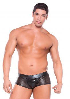 Zeus Wetlook Shorts
